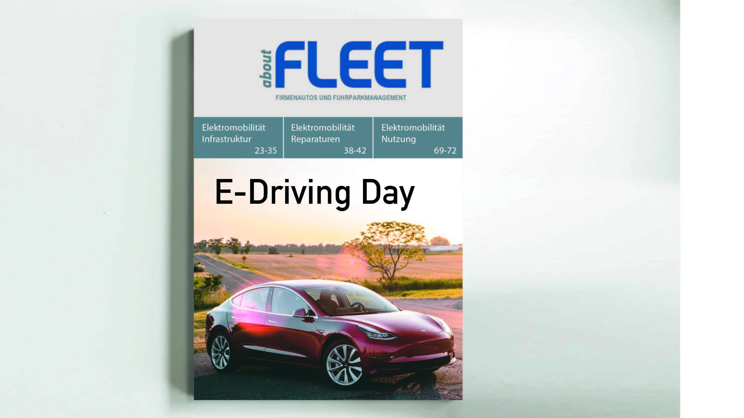 E-Driving Day (78)